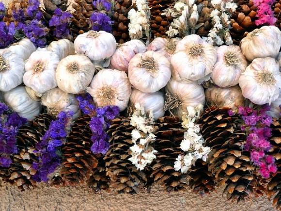 garlic-55412_640